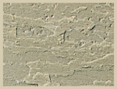 Misty Green Slate Stone