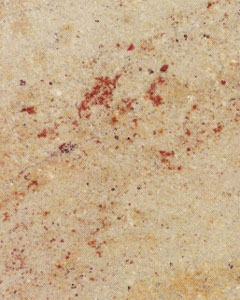 Siva Gold Granite Slabs Wholesalers