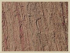Taj Rose Slate Stone
